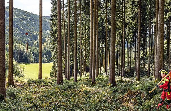 Kübler® Forstbekleidung für Baumfällsaison