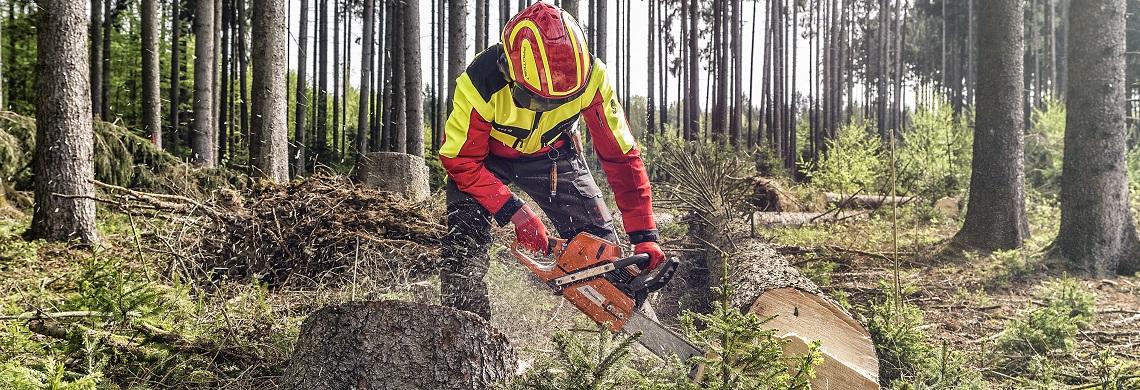 Forstschutzausrüstung